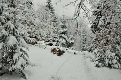 Promyk w zimie