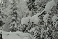 Promyk w zimie 4