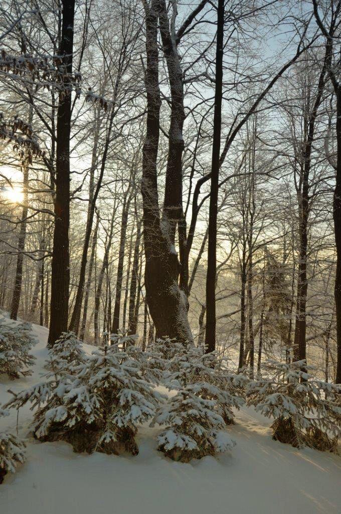 Domek Górski Promyk w Wiśle